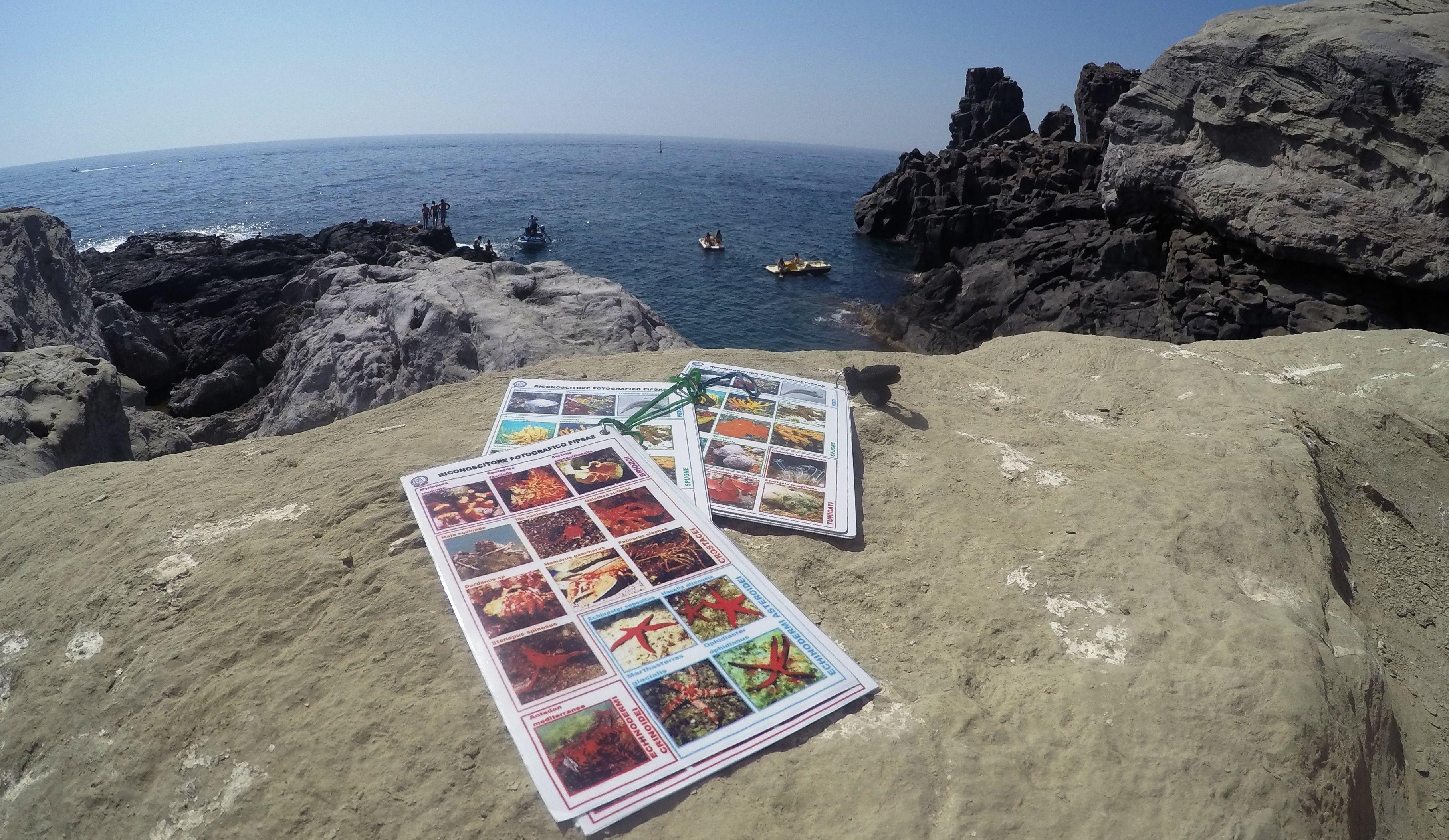 Catania – Acitrezza Snorkeling Tour